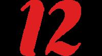 12 logo