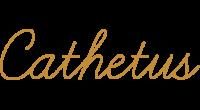 Cathetus logo