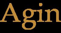 Agin logo