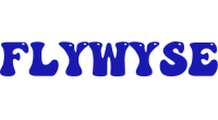 FlyWyse logo