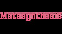 Metasynthesis logo