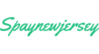 Spaynewjersey logo