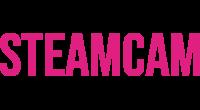 SteamCam logo