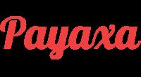 Payaxa logo
