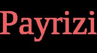 Payrizi logo