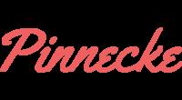 Pinnecke logo