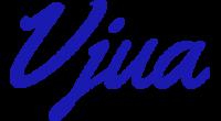 Vjua logo